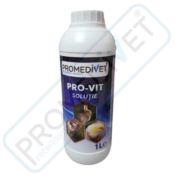 pro-vit-1l